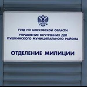 Отделения полиции Эрзина